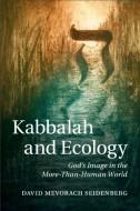 David Mevorach Seidenberg – Kabbalah and Ecology. God's Image in the More-Than-Human World