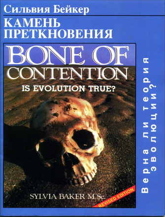 Сильвия Бейкер - Камень преткновения - Верна ли теория эволюции