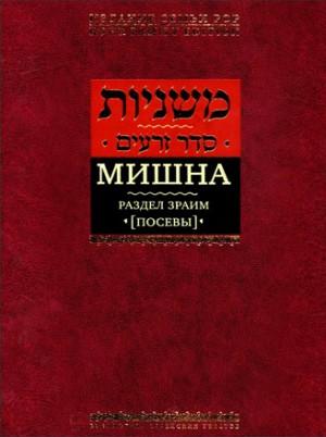 Мишна - Посевы
