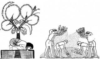 Вестель Юрий - Псалом 1 - перевод с масоретского текста и древних версий